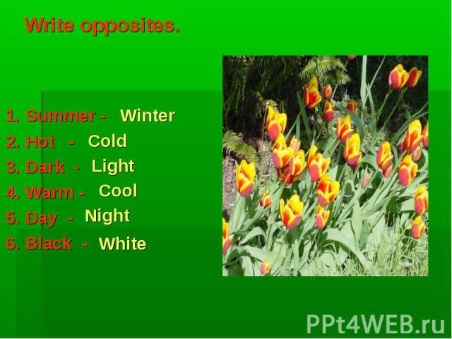 Winter Cold Light Cool Night White Write opposites. 1. Summer -2. Hot -3. Dark -4. Warm -5. Day - 6. Black -