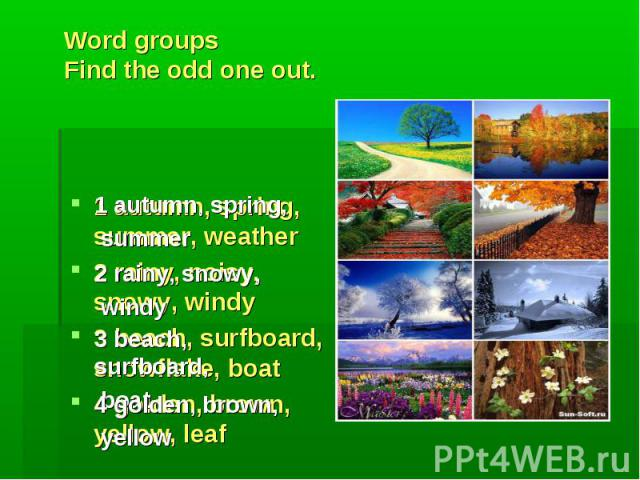 1 autumn, spring, summer 2 rainy, snowy, windy 3 beach, surfboard, boat 4 golden, brown, yellow Word groupsFind the odd one out. 1 autumn, spring, summer, weather2 rainy, noisy, snowy, windy3 beach, surfboard, snowflake, boat4 golden, brown, yellow, leaf