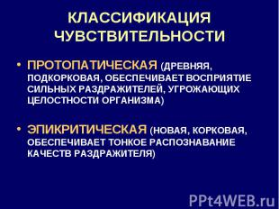 КЛАССИФИКАЦИЯ ЧУВСТВИТЕЛЬНОСТИ ПРОТОПАТИЧЕСКАЯ (ДРЕВНЯЯ, ПОДКОРКОВАЯ, ОБЕСПЕЧИВА