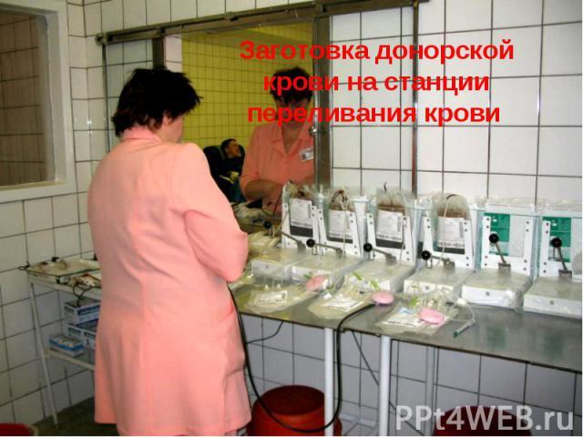 Заготовка донорской крови на станции переливания крови