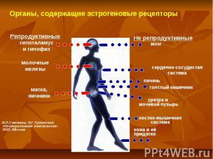 Органы, содержащие эстрогеновые рецепторы Репродуктивные Не репродуктивные гипот