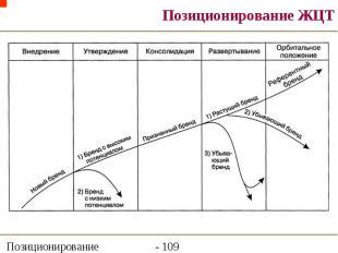 Позиционирование ЖЦТ
