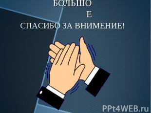 БОЛЬШОЕ СПАСИБО ЗА ВНИМЕНИЕ!