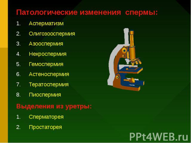 Патологические изменения спермы: Асперматизм Олигозооспермия Азооспермия Некроспермия Гемоспермия Астеноспермия Тератоспермия Пиоспермия Выделения из уретры: Сперматорея Простаторея
