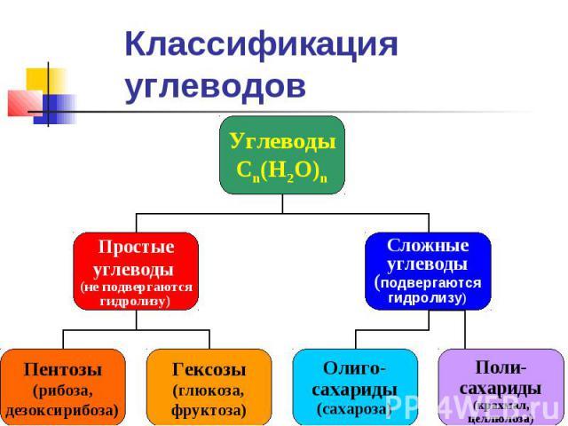 Углеводы Сn(H2O)n Простые углеводы (не подвергаются гидролизу) Сложные углеводы (подвергаются гидролизу) Пентозы (рибоза, дезоксирибоза) Гексозы (глюкоза, фруктоза) Олиго- сахариды (сахароза) Поли- сахариды (крахмал, целлюлоза) Классификация углеводов