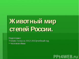 Животный мир степей России. Подготовил: Ученик 3 класса 2012-2013учебный год. Че