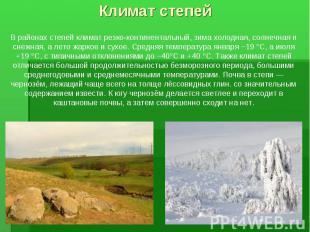 В районах степей климат резко-континентальный, зима холодная, солнечная и снежна