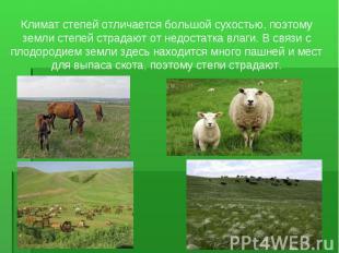 Климат степей отличается большой сухостью, поэтому земли степей страдают от недо