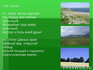 Н.В. Гоголь Ах, степи, как вы хороши! Как сердцу мил пейзаж пустынный, Бескрайни