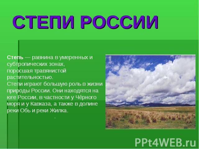 Степь — равнина в умеренных и субтропических зонах, поросшая травянистой растительностью. Степи играют большую роль в жизни природы России. Они находятся на юге России, в частности у Чёрного моря и у Кавказа, а также в долине реки Обь и реки Жилка. …