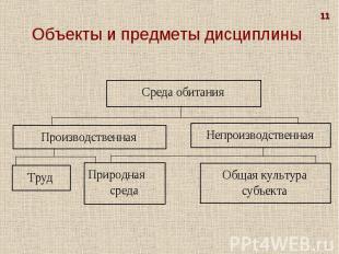 11 Объекты и предметы дисциплины