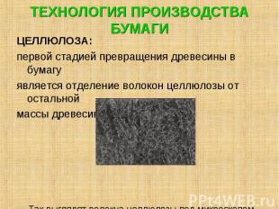 ТЕХНОЛОГИЯ ПРОИЗВОДСТВА БУМАГИ ЦЕЛЛЮЛОЗА: первой стадией превращения древесины в