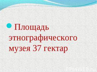 Площадь этнографического музея 37 гектар