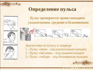 Пульс проверяется тремя пальцами: указательным, средним и безымянным: Диагностик