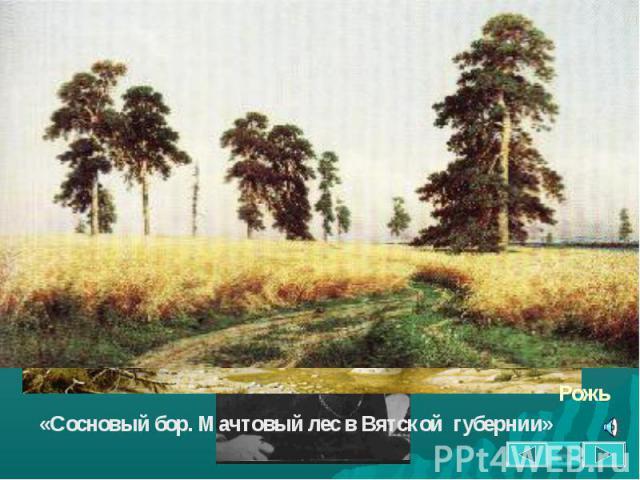 Творчество Шишкина тесно связано с родным краем. Будучи известным художником, он постоянно приезжает в Елабугу, собирает материал для своих картин. Величественная природа елабужских окрестностей вдохновила художника на создание его лучших произведен…