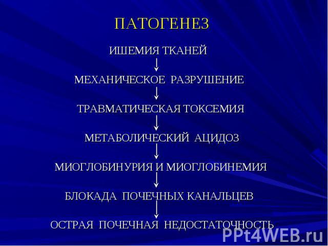 ПАТОГЕНЕЗ ИШЕМИЯ ТКАНЕЙ МЕХАНИЧЕСКОЕ РАЗРУШЕНИЕ ТРАВМАТИЧЕСКАЯ ТОКСЕМИЯ МЕТАБОЛИЧЕСКИЙ АЦИДОЗ МИОГЛОБИНУРИЯ И МИОГЛОБИНЕМИЯ БЛОКАДА ПОЧЕЧНЫХ КАНАЛЬЦЕВ ОСТРАЯ ПОЧЕЧНАЯ НЕДОСТАТОЧНОСТЬ