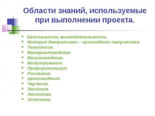Области знаний, используемые при выполнении проекта. Безопасность жизнедеятельно