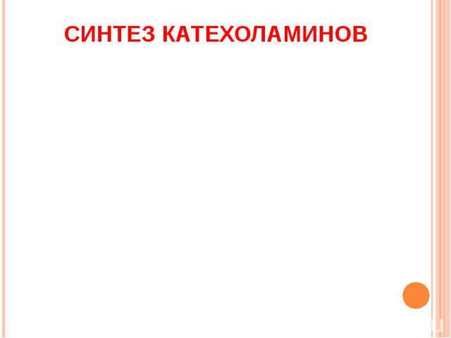 СИНТЕЗ КАТЕХОЛАМИНОВ