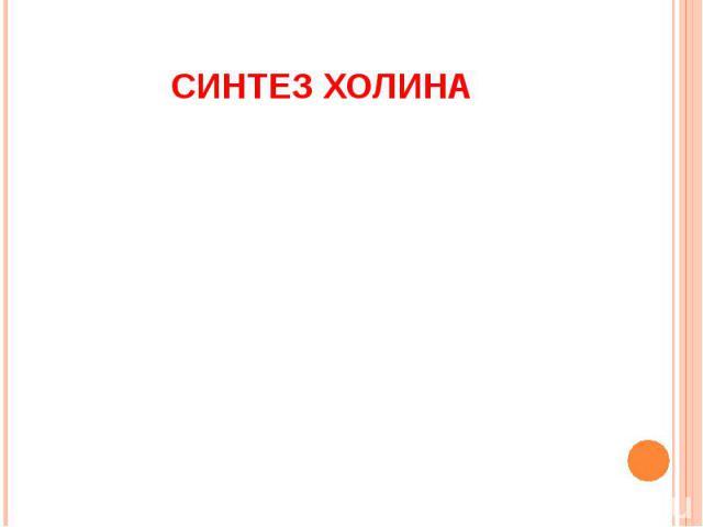 СИНТЕЗ ХОЛИНА