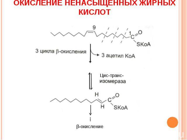 ОКИСЛЕНИЕ НЕНАСЫЩЕННЫХ ЖИРНЫХ КИСЛОТ Цис-транс- β-окисление …