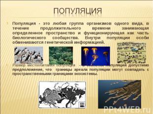Популяция - это любая группа организмов одного вида, в течение продолжительного