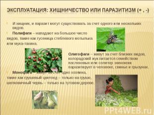 И хищник, и паразит могут существовать за счет одного или нескольких видов. Поли