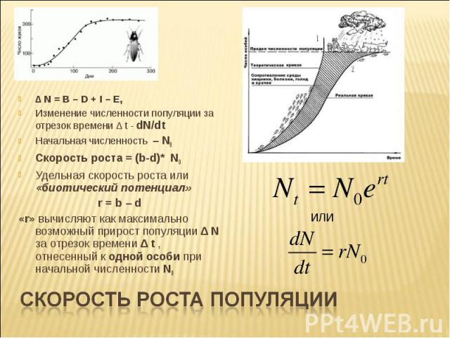 ∆ N = B – D + I – E, Изменение численности популяции за отрезок времени ∆ t - dN/dt Начальная численность – N0 Скорость роста = (b-d)* N0 Удельная скорость роста или «биотический потенциал» r = b – d «r» вычисляют как максимально возможный прирост п…