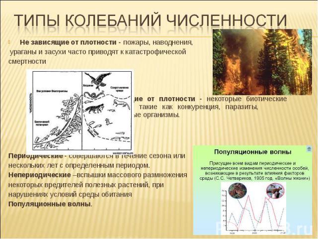 Не зависящие от плотности - пожары, наводнения, ураганы и засухи часто приводят к катастрофической смертности Зависящие от плотности - некоторые биотические факторы, такие как конкуренция, паразиты, патогенные организмы. Периодические - совершаются …