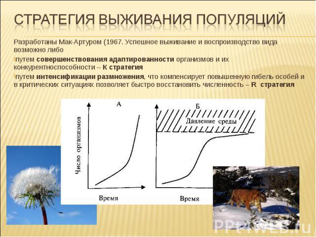 Разработаны Мак-Артуром (1967. Успешное выживание и воспроизводство вида возможно либо путем совершенствования адаптированности организмов и их конкурентноспособности – К стратегия путем интенсификации размножения, что компенсирует повышенную гибель…