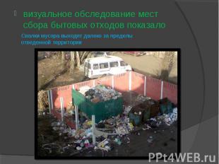 визуальное обследование мест сбора бытовых отходов показало Свалки мусора выходя