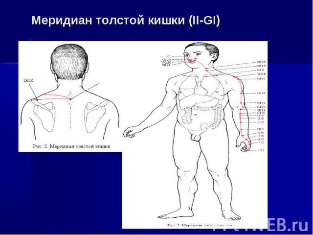Меридиан толстой кишки (II-GI)