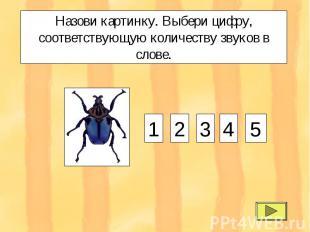 Назови картинку. Выбери цифру, соответствующую количеству звуков в слове. 1 2 3