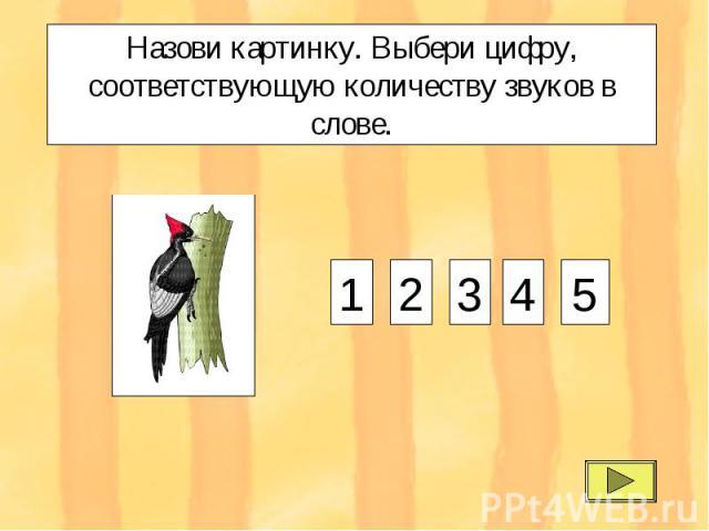 Назови картинку. Выбери цифру, соответствующую количеству звуков в слове. 1 2 3 4 5