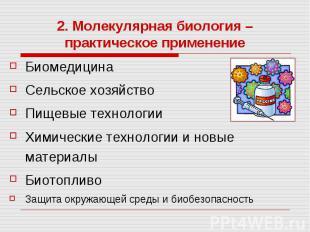 2. Молекулярная биология – практическое применение Биомедицина Сельское хозяйств