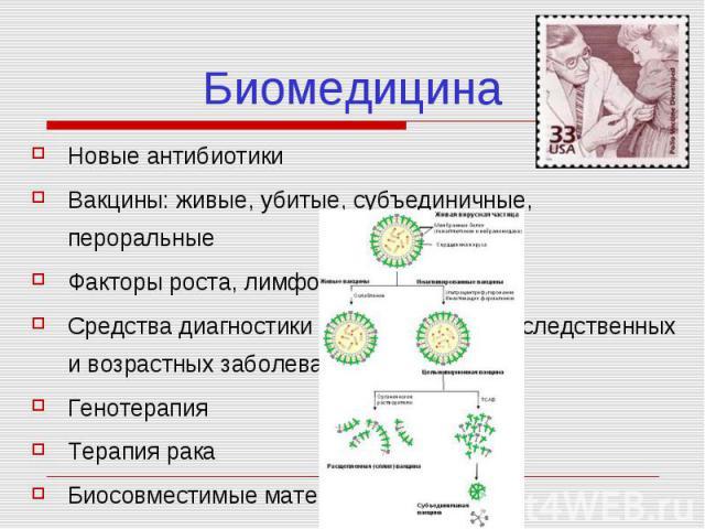 Биомедицина Новые антибиотики Вакцины: живые, убитые, субъединичные, пероральные Факторы роста, лимфокины Средства диагностики инфекционных, наследственных и возрастных заболеваний Генотерапия Терапия рака Биосовместимые материалы