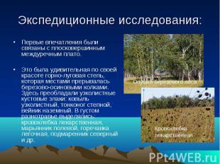 Кровохлебка лекарственная Опушка березового леса Экспедиционные исследования: Пе
