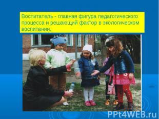 Воспитатель - главная фигура педагогического процесса и решающий фактор в эколог