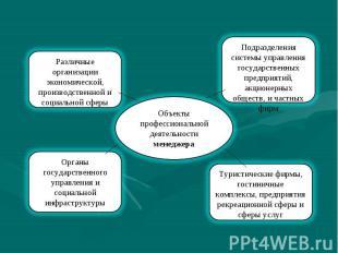 Объекты профессиональной деятельности менеджера Подразделения системы управления