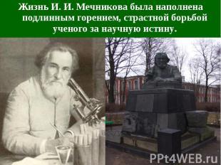 Жизнь И. И. Мечникова была наполнена подлинным горением, страстной борьбой учено