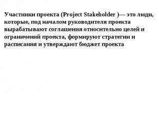 Участники проекта (Project Stakeholder )— это люди, которые, под началом руковод
