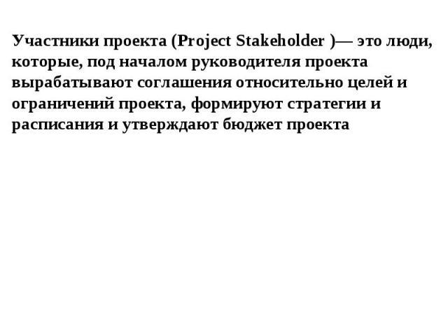 Участники проекта (Project Stakeholder )— это люди, которые, под началом руководителя проекта вырабатывают соглашения относительно целей и ограничений проекта, формируют стратегии и расписания и утверждают бюджет проекта