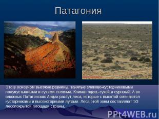 Патагония Это в основном высокие равнины, занятые злаково-кустарниковыми полупус