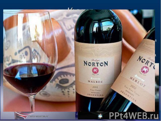 Кухня Самыми популярными алкогольными напитками здесь, несомненно, являются превосходные аргентинские вина, особенно - красные. Завезенная ещё испанскими миссионерами, виноградная лоза прижилась здесь настолько хорошо, что в наши дни сорта \