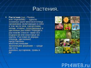 Растения. Растения (лат. Plantae, или Vegetabilia) — одна из основных групп мног
