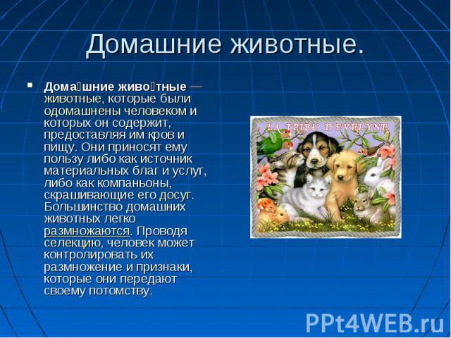Домашние животные. Домашние животные — животные, которые были одомашнены человеком и которых он содержит, предоставляя им кров и пищу. Они приносят ему пользу либо как источник материальных благ и услуг, либо как компаньоны, скрашивающие его досуг. …