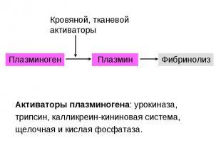 Плазминоген Плазмин Фибринолиз Кровяной, тканевой активаторы Активаторы плазмино
