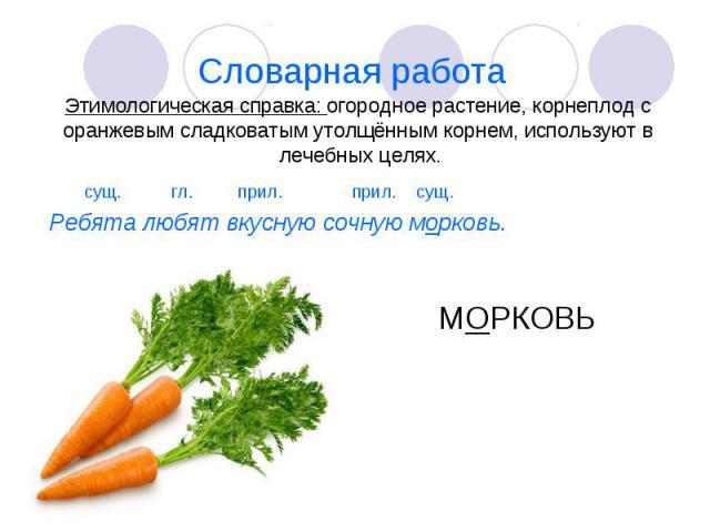 Словарная работа Этимологическая справка: огородное растение, корнеплод с оранжевым сладковатым утолщённым корнем, используют в лечебных целях. сущ. гл. прил. прил. сущ. Ребята любят вкусную сочную морковь. МОРКОВЬ