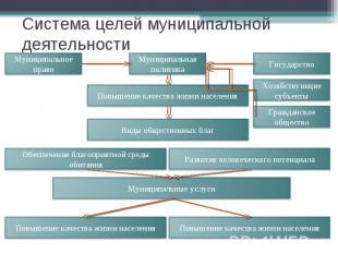 Система целей муниципальной деятельности Муниципальное право Муниципальная полит