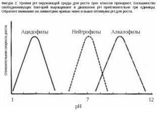 Фигура 2. Уровни pH окружающей среды для роста трех классов прокариот. Большинст