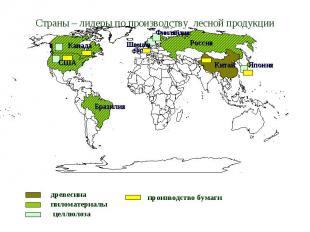 Страны – лидеры по производству лесной продукции древесина пиломатериалы целлюло